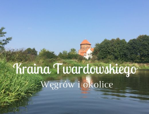 blog_wyrozniajace-1