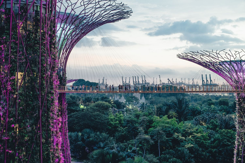 Gardens by the Bay. Singapur